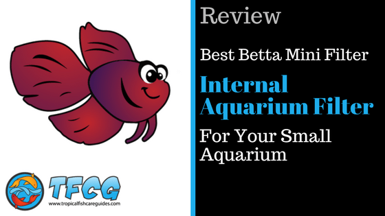 Selecting The Best Betta Mini Internal Aquarium Filter For Your Small Aquarium