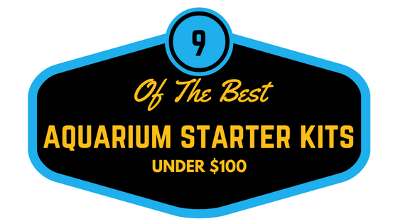 9 Of The Best Starter Fish Tank Kits Under $100