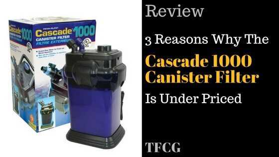 3 Reasons The Cascade 1000 Canister Filter Is Under Priced