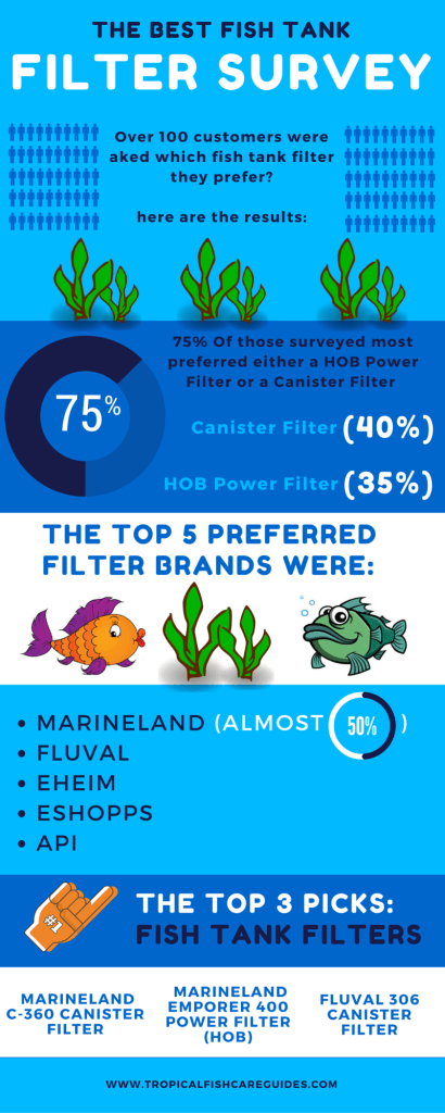 Best Fish Tank Filter Survey Infographic
