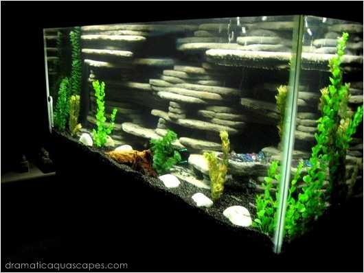 9 DIY Aquarium Backgrounds You Can Start Today - Learn How
