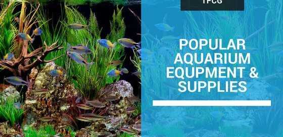 Most Popular Aquarium Equipment