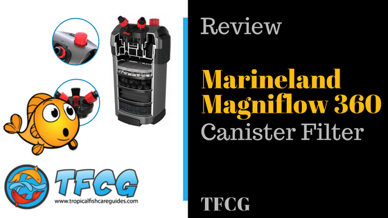 Marineland Canister Filter Review_ Pros and Cons
