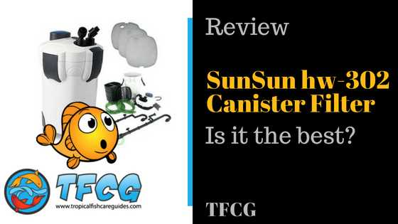 SunSun Canister Filter Review_ Is it the best_