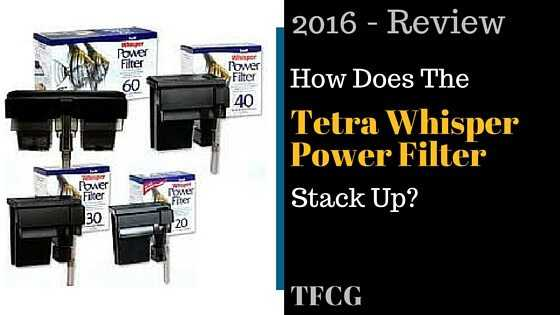 Tetra Whisper Power Filter Review- How Does It Stack Up-