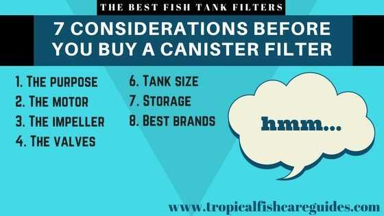 Best Fish Tank Filter- 7 Considerations before you buy a canister filter