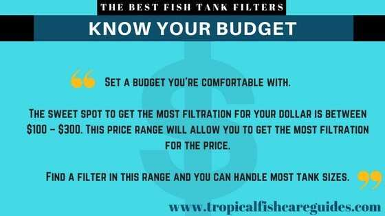 Best Fish Tank Filter- Know Your Budget