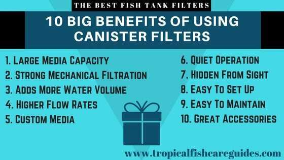Best Fish Tank Filter- 10 BIG Benefits of using a canister filter