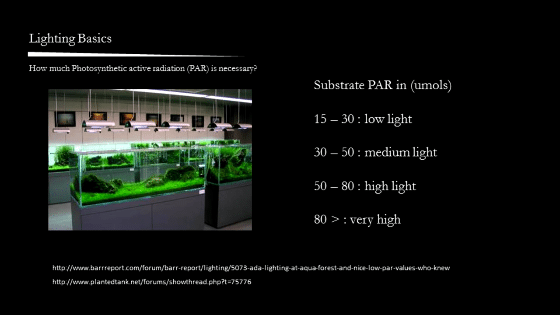 LED Aquarium Lighting: PAR