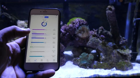 Programmable LED Lights For Saltwater Tank