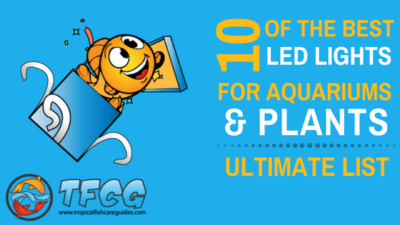 Ultimate List Of The Best LED Lights For Freshwater Aquariums