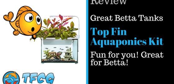 Great Betta Fish Tanks Top Fin Aquaponics - Review