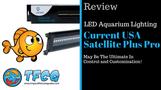 LED Aquarium Lighting Reviews- Current USA Satellite Freshwater LED Plus Pro