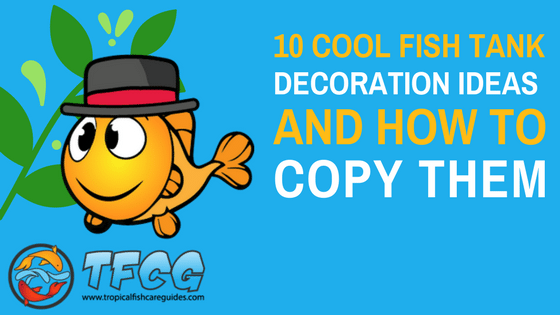 10 Cool Fish Tank Decoration Ideas & How To Copy Them