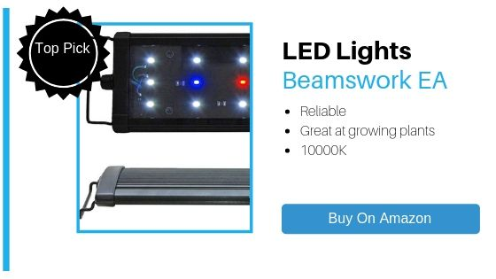 Beamswork EA LED Lights