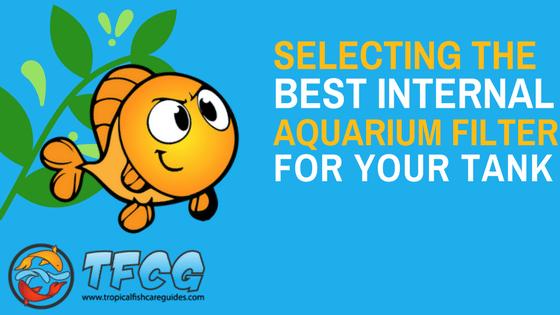 Best Internal Aquarium Filter - Reviews (Top Picks) & Guide