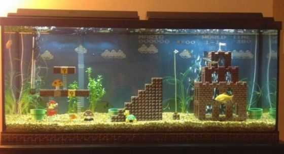 Cool Fish Tank Ideas - Super Mario Fish Tank