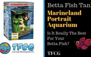 Fish Tank Review - The Marineland ML90609 Portrait Aquarium Kit