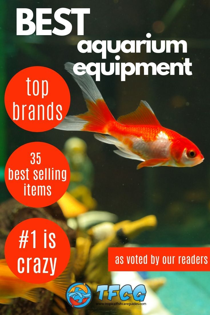Most Popular Aquarium Equipment and Supplies As Voted By Our Readers