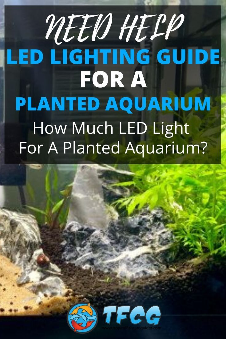 Planted Aquarium LED Lighting Guide - How Much LED Light For A Planted Aquarium