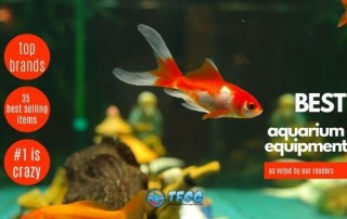 The Best Aquarium Equipment - [As Voted By Our Readers]