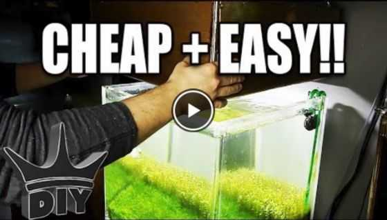 make a diy led aquarium light video
