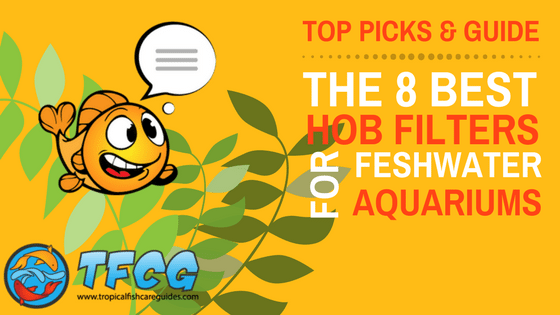 Best hob Filter For Your Aquarium – Reviews (Top Picks) & Guide (1)