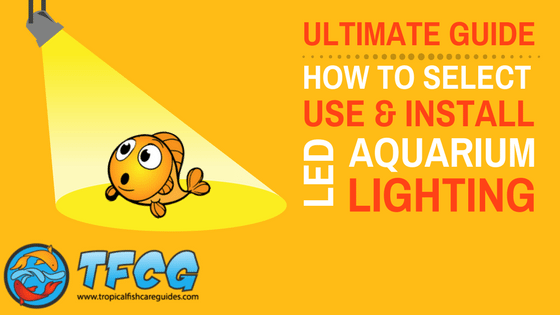 Freshwater LED Aquarium Lighting Guide - Use, Install, Selection Guides & Reviews