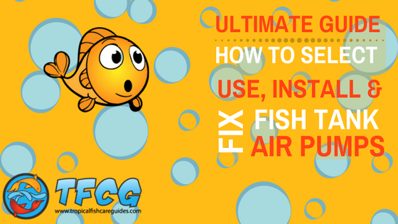 How to select, use, install and fix a fish tank air pump.