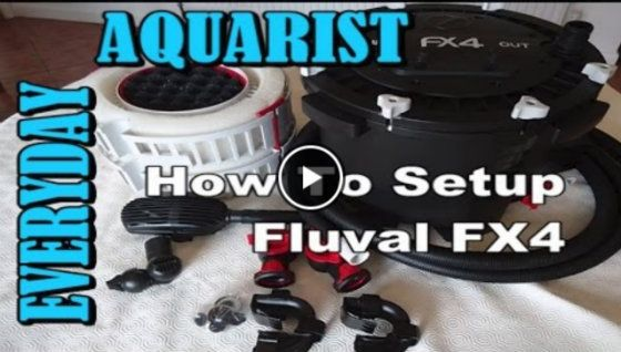 How to set up the Fluval FX6 as well as how to prime the FX6 filter.