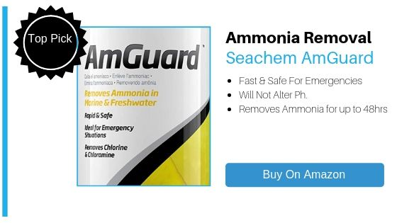 How To Reduce Ammonia - Seachem AmGuard