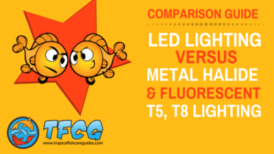 LED Aquarium Lighting Comparison Guide_ Everything You Need to Know