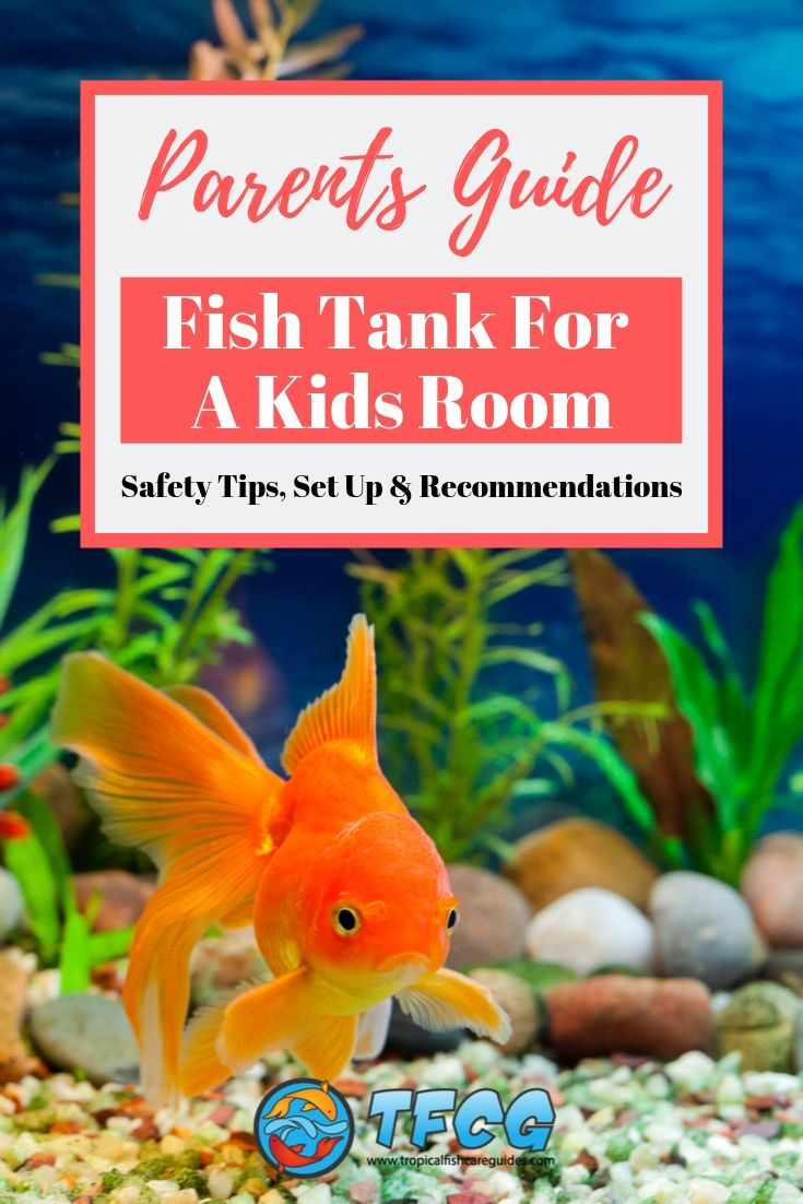 Fish Tank In A Kids Room - Safety Tips, Set Up & Recommendations