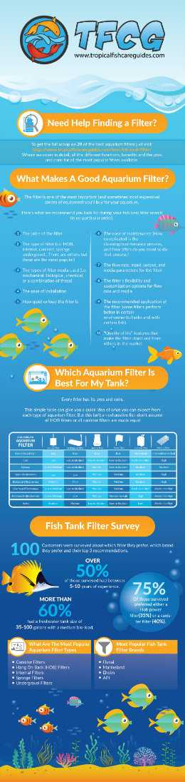 Best Aquarium Filter Infographic