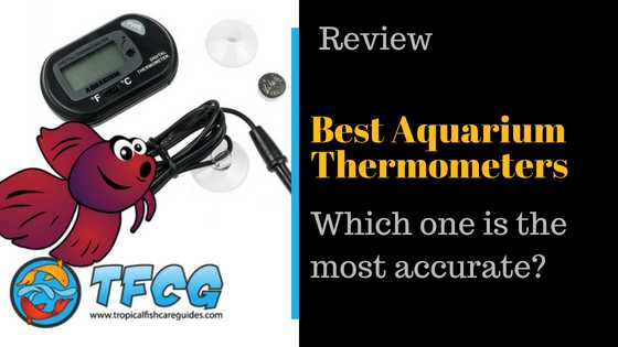 Best Aquarium Thermometer Reviews