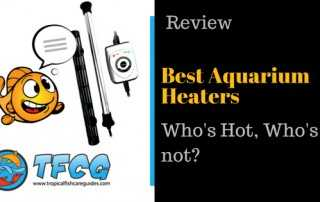 Fish Tank Heaters - 2018 Reviews & Guide