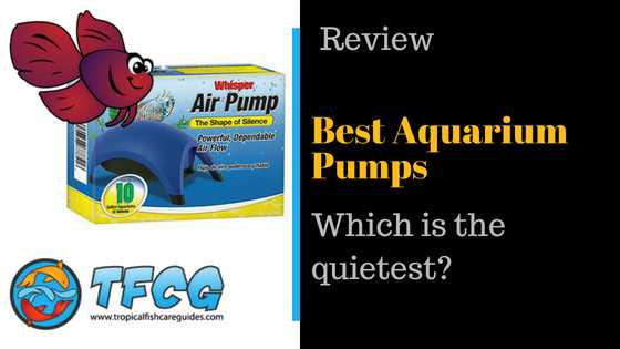 Best Aquarium Pumps Reviews