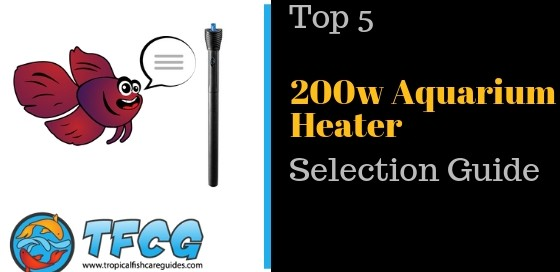 200w Aquarium Heater_ 2019's Top 5 & Selection Guide