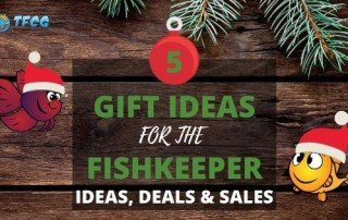 Aquarium Gift Ideas, Deals and Sales For Fish Keepers