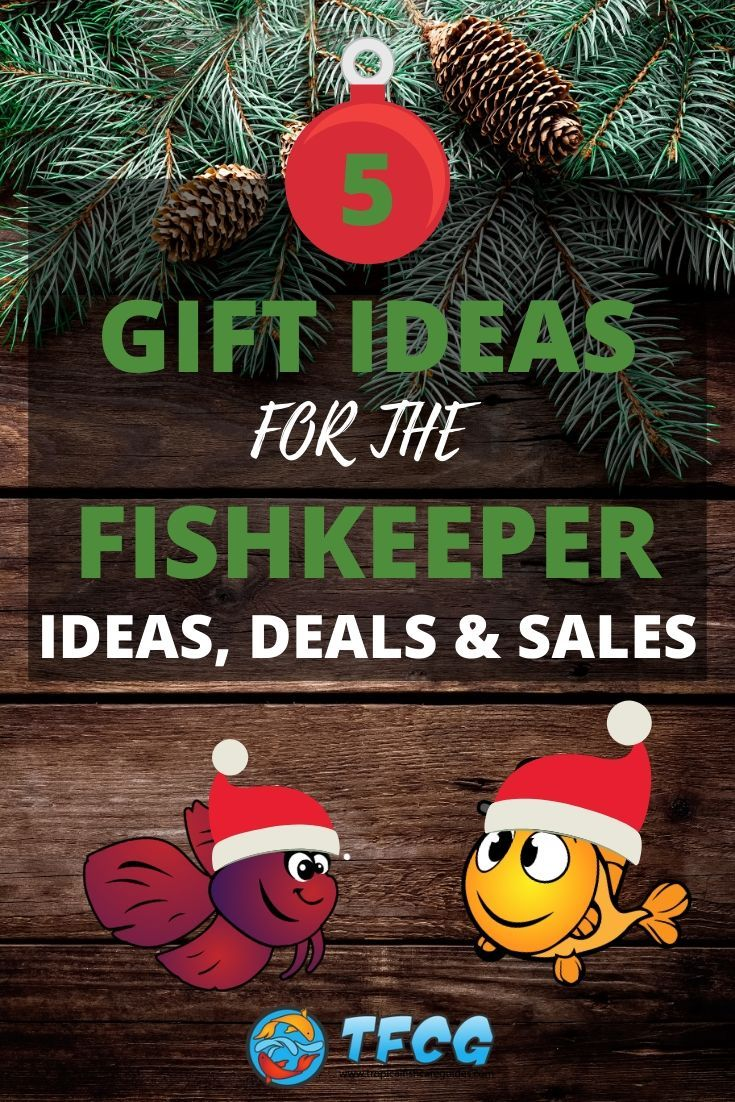 Fish Tank Gift Ideas, Deals and Sales For Fish Keepers