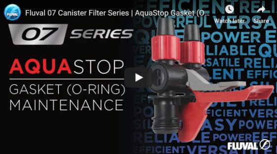 AquaStop Gasket Maintenance