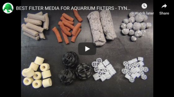 Best Canister Filter Media - Video