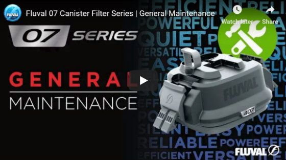 Fluval 07 Canister Filter General Maintenance Tips
