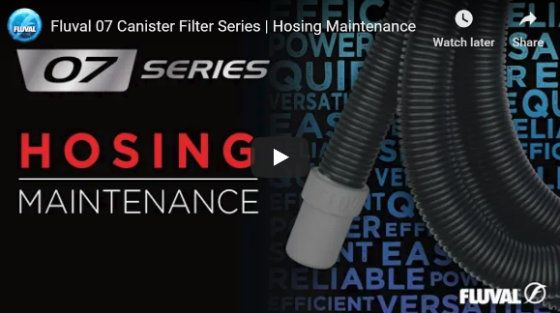 Hosing Maintenance