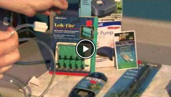 How to set up an Aquarium Air Pump Video