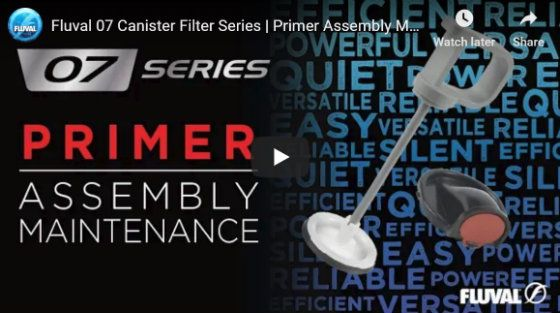 Primer Assembly Maintenance