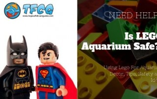 Are Lego Aquarium Safe_ Using Lego For Aquarium Decor