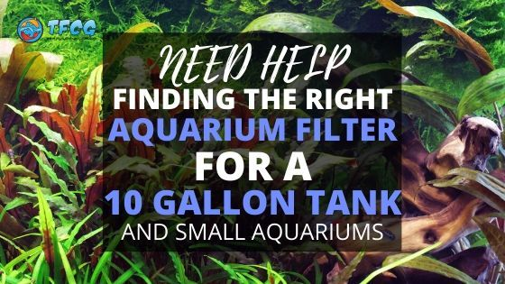Finding The Right Aquarium Filter For A 10 Gallon Tank And Small Aquariums