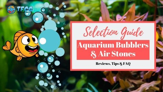 Top Choices For The Best Aquarium Bubbler and Air Stones