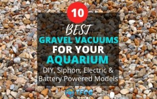 Best Aquarium Gravel Vacuums